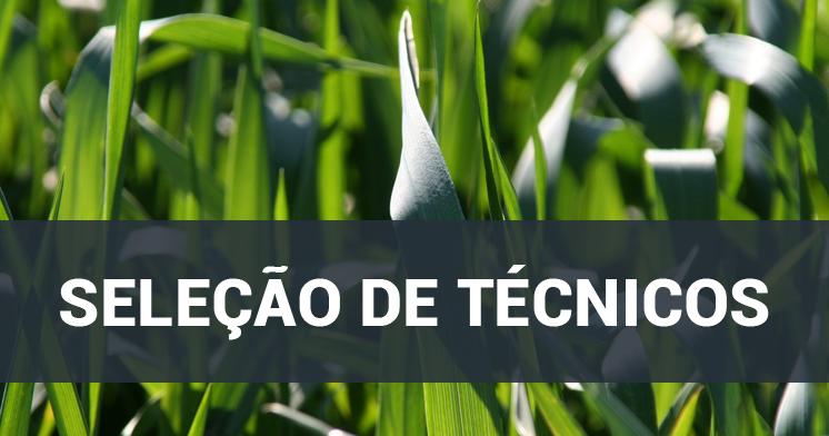 A Universidade Federal do Recôncavo da Bahia (UFRB) torna pública a  abertura das inscrições para a seleção simplificada de dois técnicos  especializados para ... 3ead8f9c6a8d6